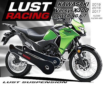 2017-2019 Kawasaki Versys X-300 lowering kit